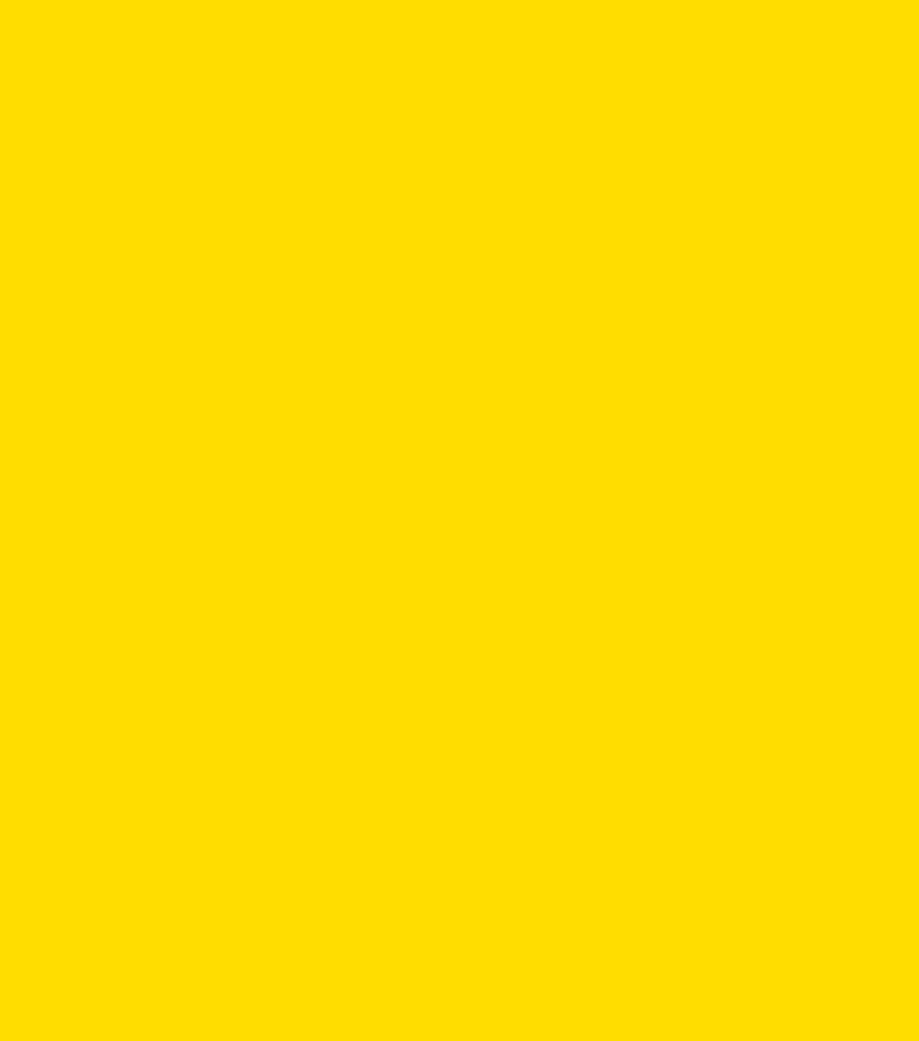Os rumos de uma startup educacional